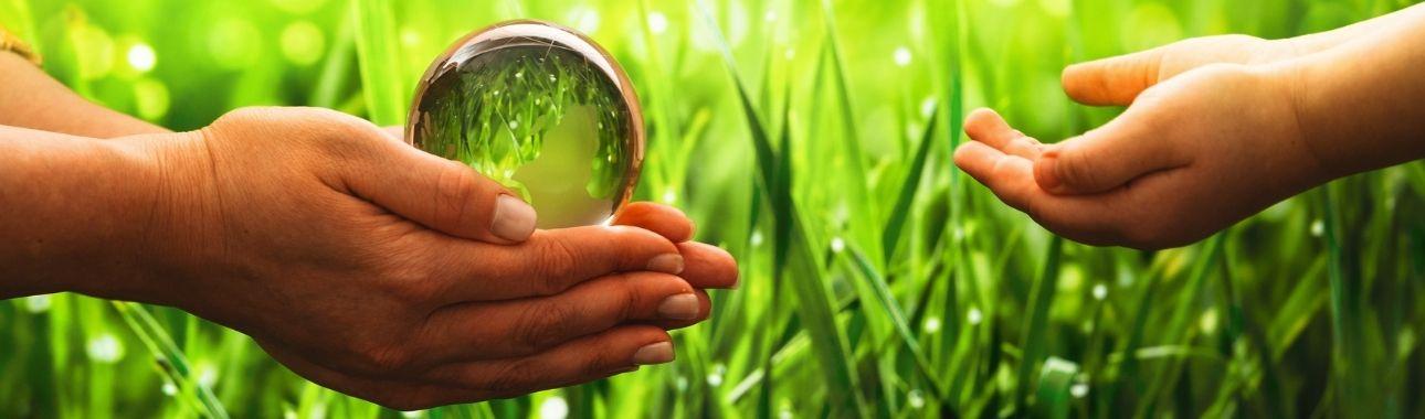La spiritualité de l'environnement